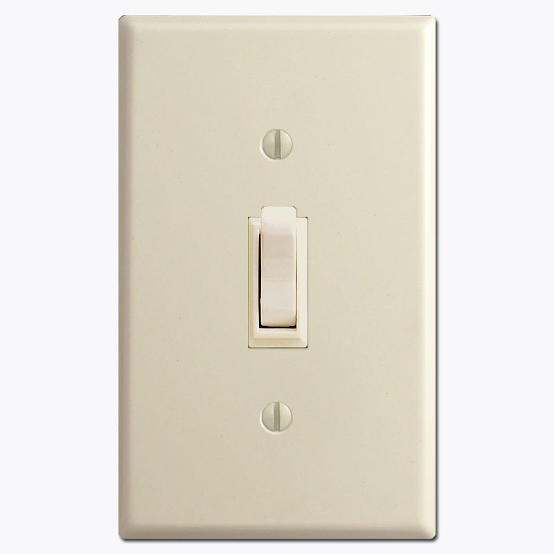 info-toggle-switch-and-plate.jpg